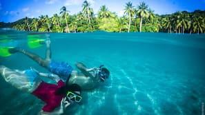 Beach nearby, snorkelling, beach bar, kayaking