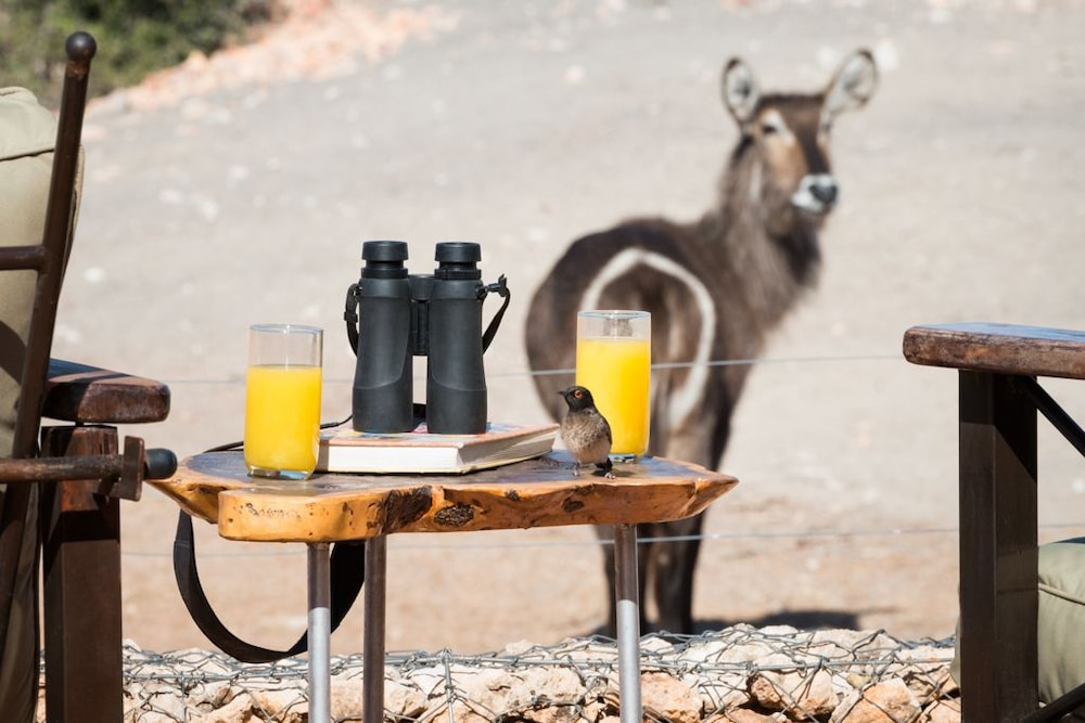 Property Amenity, Anderssons Camp