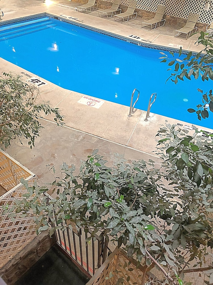 Indoor Pool, 1Hotel