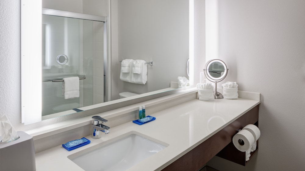 Bathroom, Holiday Inn Express & Suites Orlando at SeaWorld, an IHG Hotel