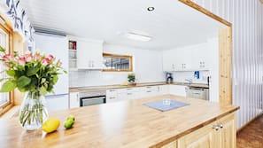 Een koelkast/vriezer, een oven, een kookplaat, een vaatwasser