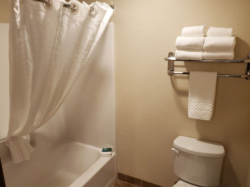 Bathroom, Cobblestone Inn & Suites - Maryville