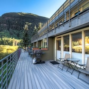 Muscatel Flats 20 1 Bedroom Condo By Accommodations in Telluride