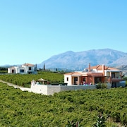 Cretan Vineyard Hill Villa