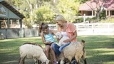 Paradise Country Farmstay - Oxenford Hotels