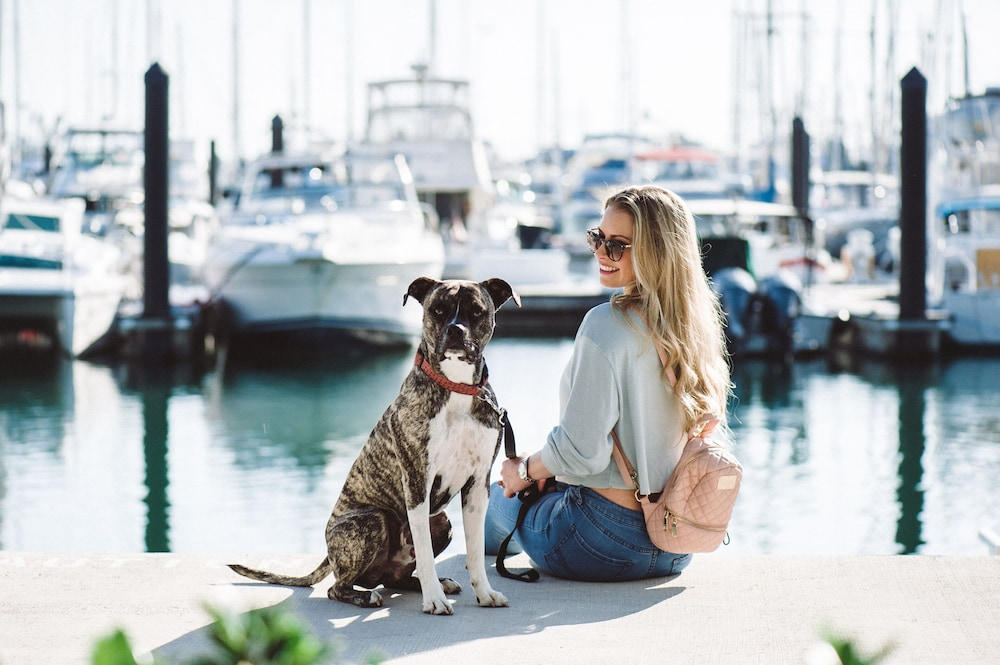 Pet-Friendly, The Perry Hotel Key West