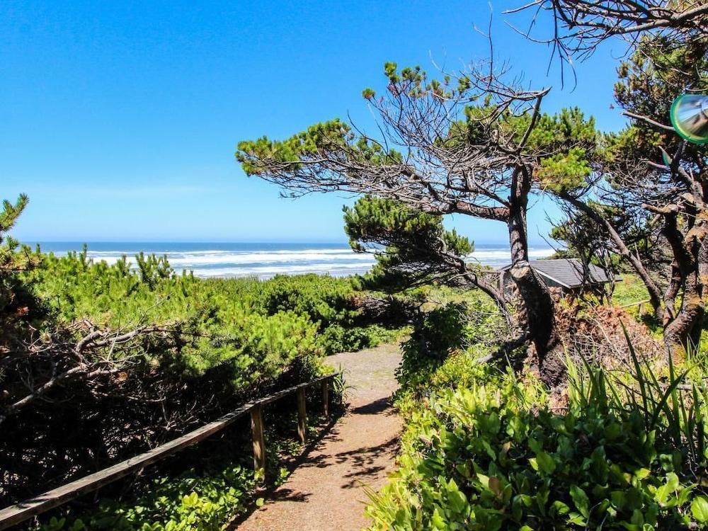 Astounding Cape Cod Cottages Unit 3 In Oregon Coast Hotel Rates Home Interior And Landscaping Transignezvosmurscom