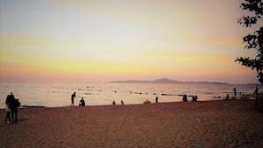 ใกล้ชายหาด, บาร์ริมหาด