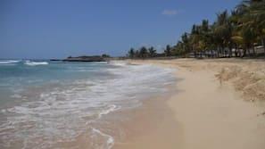 Plage, sable blanc, serviettes de plage, ski nautique