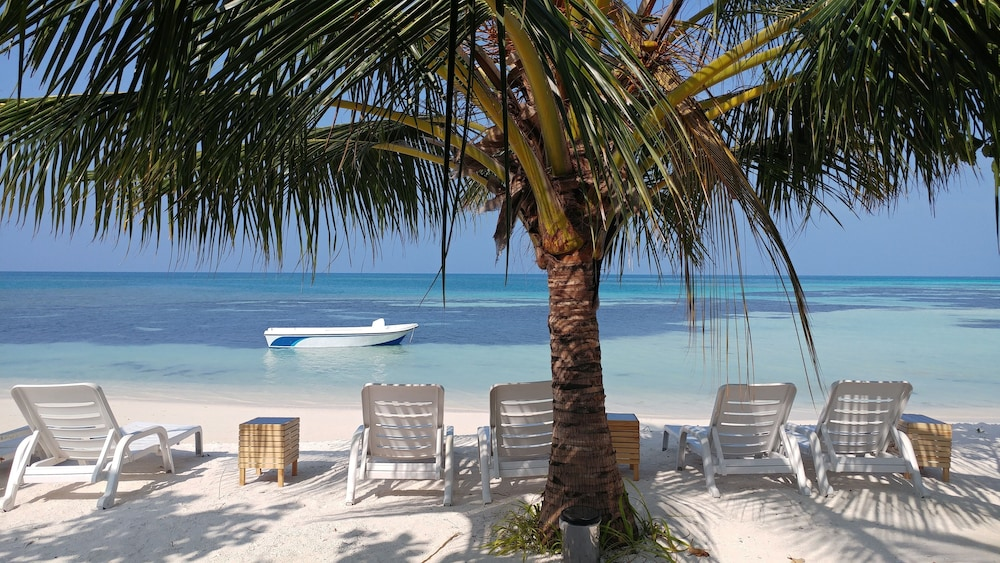 Crown Beach Hotel Maldives In Dhiffushi Hotel Rates Reviews On