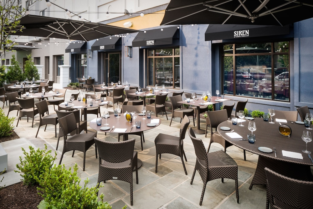 Terrace/Patio, The Darcy Hotel