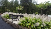 Warblers Retreat (2 of 36)