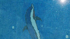 สระว่ายน้ำกลางแจ้งเปิดตามฤดูกาล