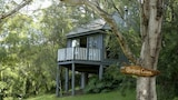 Bluegums Cabins Barrington Tops - Bandon Grove Hotels