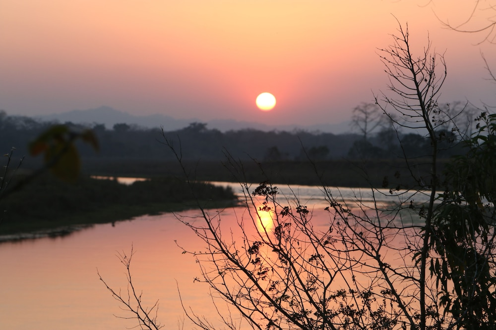 View from Property, Jagatpur Lodge - Chitwan National Park