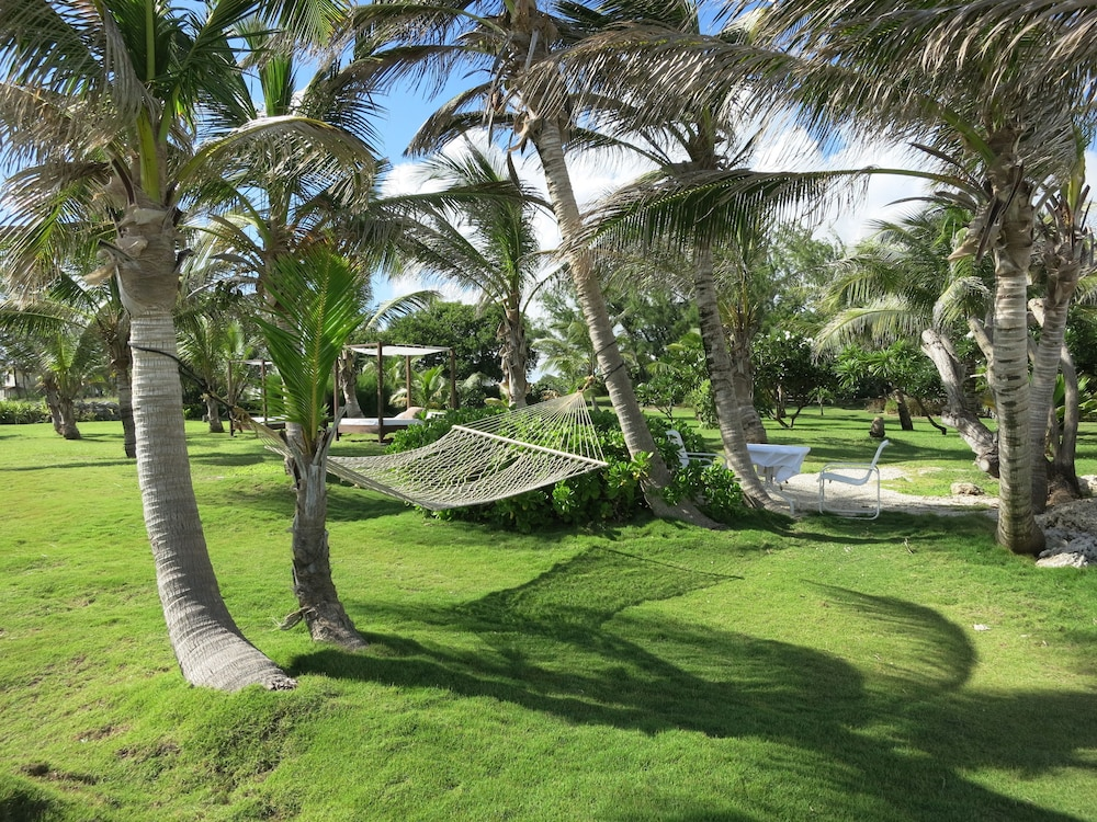 Garden, Inchcape Seaside Villas