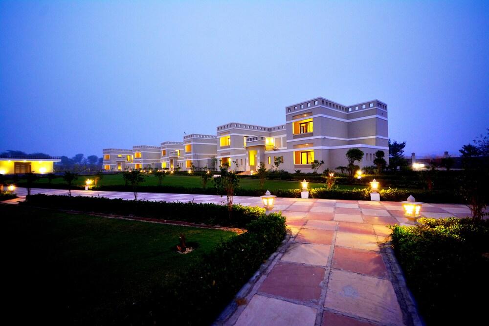 tree house jaipur. Featured Image Tree House Jaipur