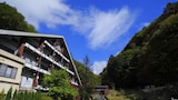 Tateshina Onsen Hotel Shinyu - Chino Hotels