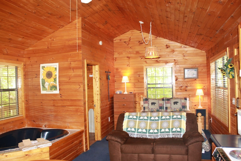 Living Room, Special Private Cabin Getaway! Hot Tub & Heart Shaped Jacuzzi!! Gatlinburg/pf