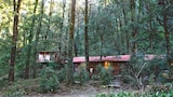 Ayar Jungle Camp - Nainital Hotels