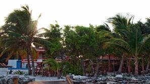 Private beach, sun-loungers, beach towels, beach massages