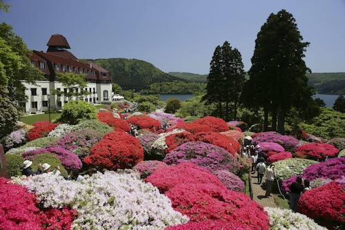 Hotel de Yama, Hakone Lake Side