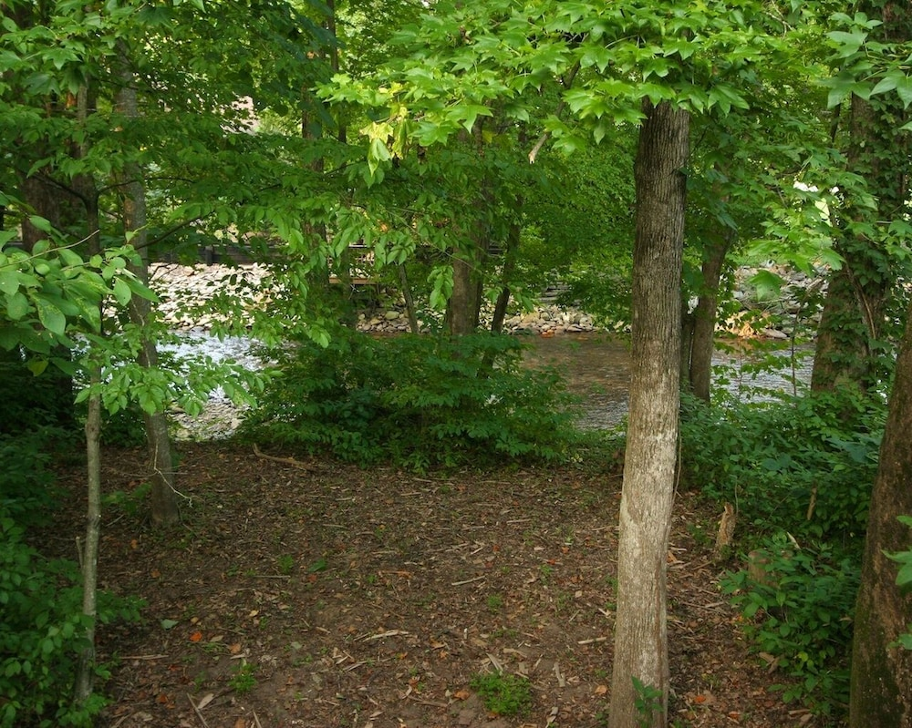Property Grounds, Helen Riverside Cabin-chattahoochee River-walk to Town