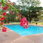 Oasis Near Downtown Austin - 8 Bedroom House on 30 Acres With Pool, Party Barn