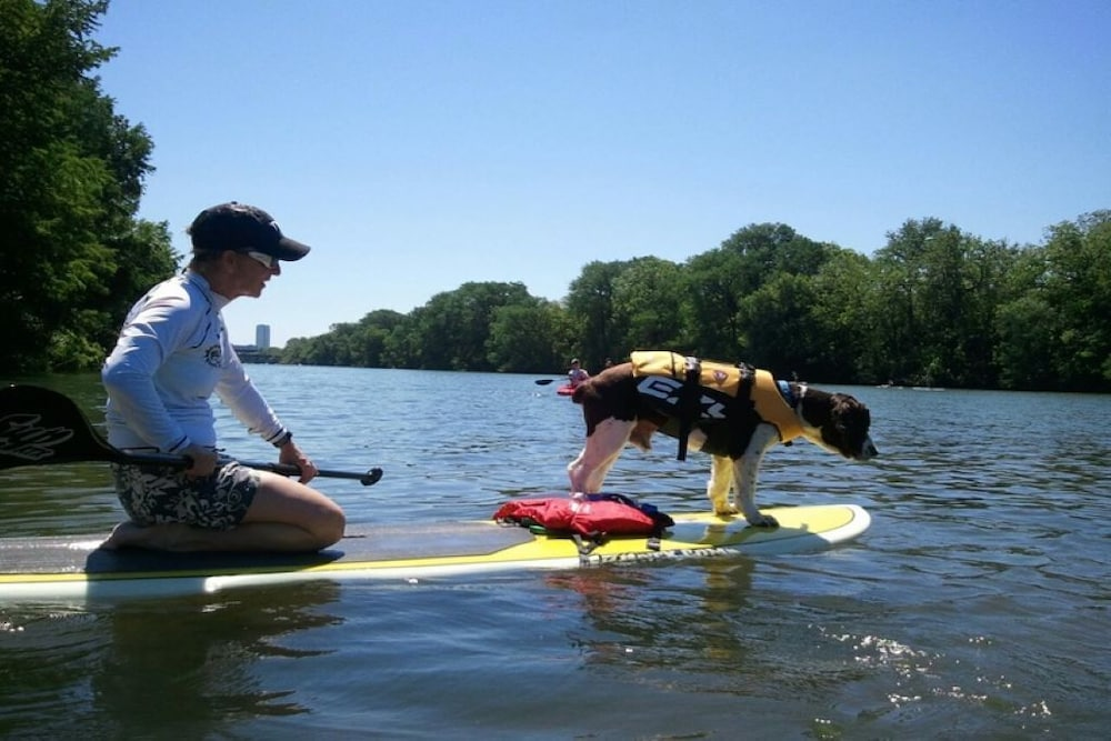 Fitness Facility, Treehouse Vibe! Kayak & SUP Here ALL Year Long Swim, Hike, River Float