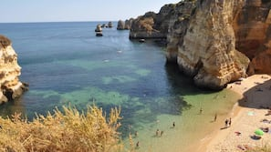 Serviettes de plage