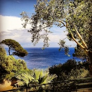 Elba - Discount Nave Apartment in the Green: Access to the sea on Private Beach