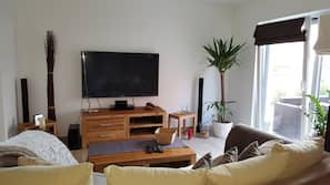 TV, DVD player, video library, stereo
