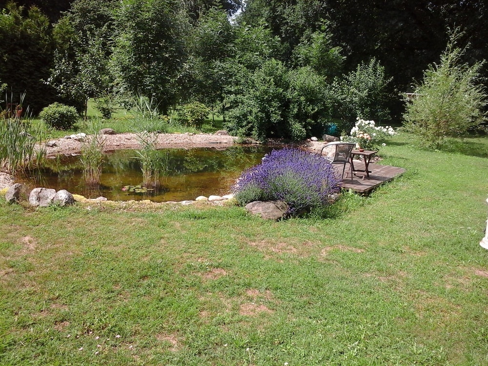 Property Grounds, 6 Cottages Ideal for Family Gatherings Near the Spreewald