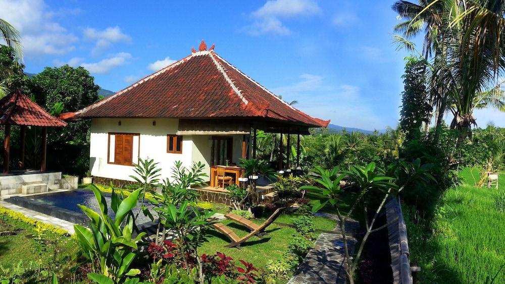 Droomhuis La House : Droomhuis in het rijstveld in de zonsondergang privé zwembad