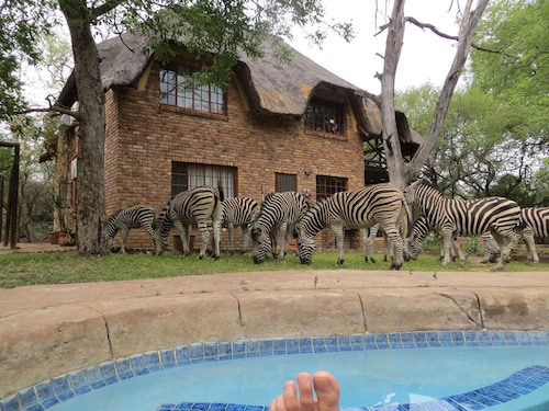 Safari in the Garden, Your Private Viewing Deck. Enjoy the Bush in Privacy!
