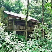 Wolf Branch Cabin- Privacy Abounds, Hot Tub, Pet Friendly