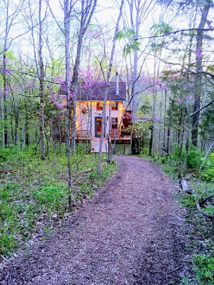 Property Grounds, Stay in Tree House Built by Treehouse Master Pete Nelson ~ off the Grid