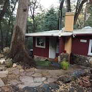 The Perfect Palomar Mountain Getaway - Fall is in the Air..