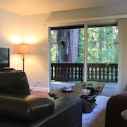 Downtown Mill Valley 3 Bedroom Chalet