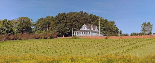 Large Century-old Home With Organic Vineyard. Very Private With Grand View