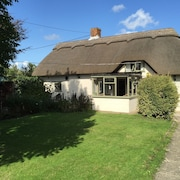 New Forest Cottage With Ponies at the Gate, Village Location With pub to Walk to