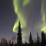 Alaska Aurora Adventures Aurora Cabin A World Class Northern Lights Viewing