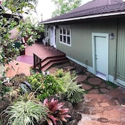 Incredible Feel of Old Hawaii, The Artist's House