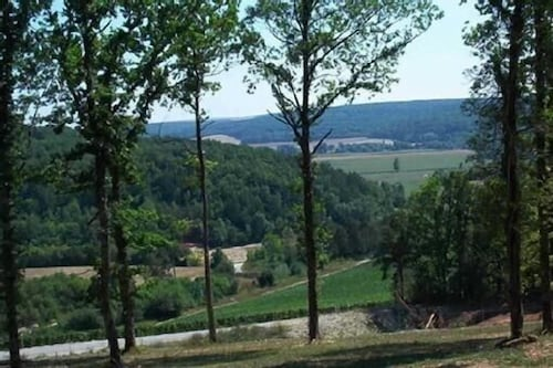 Property Grounds, Two log Houses With Swimming Pool and Sauna in Essoyes, Champagne