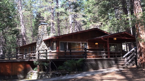 Log Cabin Nestled in the Pine Trees in Yosemite National Park