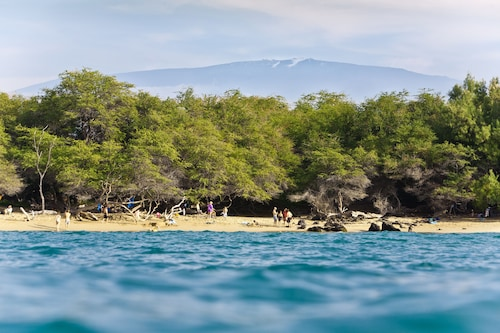 Right on Waialea Bay! White Sand Beach - Perfect for Families