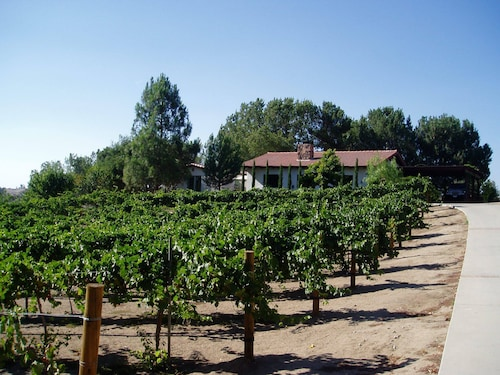 Private 2 BR, 2 BA Guesthouse IN THE Vines With Pool - Walk TO Wineries