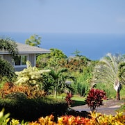 Air Conditioned, Tropical Garden, Ocean View, Central Location, Free Snacks