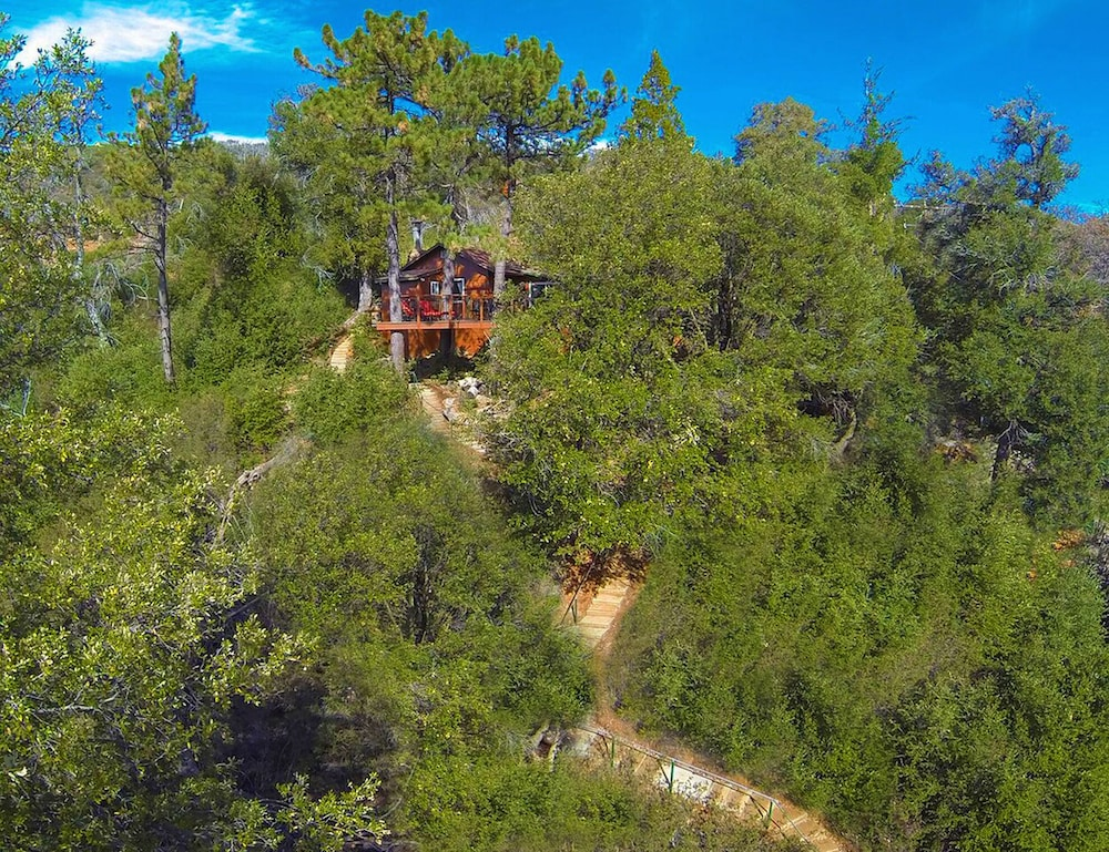 Property Grounds, *** LUXURIOUS TREE-HOUSE***  SPA + PANORAMIC LAKE VIEW - We thoroughly Disinfect