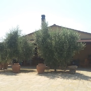 Rent House 90 m. With 2000m Garden. 2 km. From the sea in the Countryside